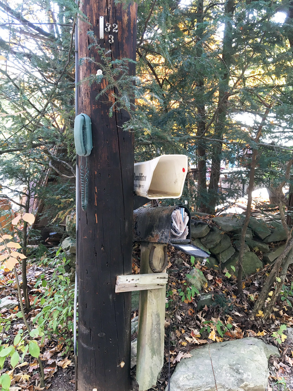 A telephone attached to a telegraph pole in rural USA.