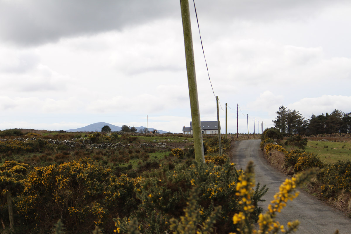 A line of poles in Inishowen, Co. Donegal, Ireland