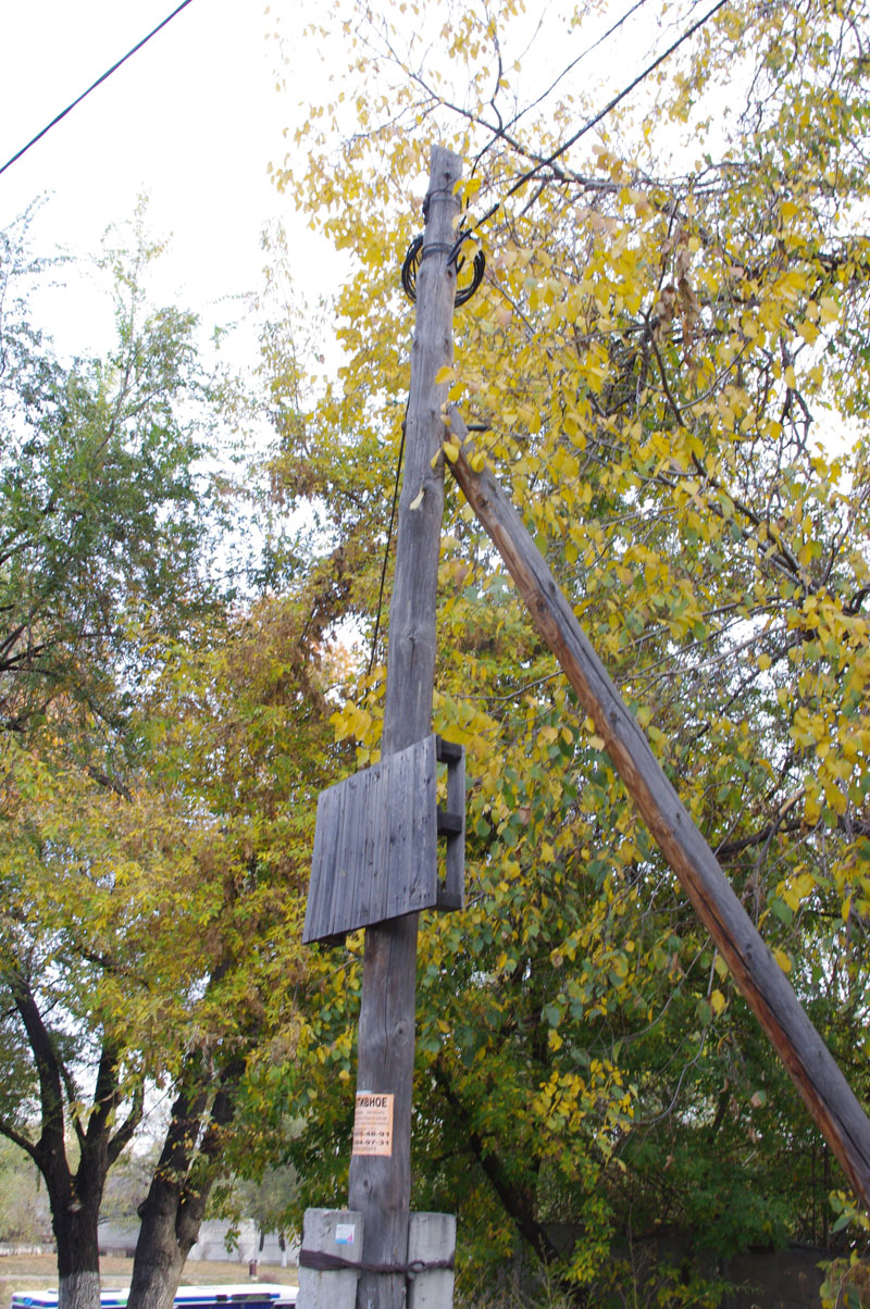 A pallet half way up a utility pole in Kazhakstan