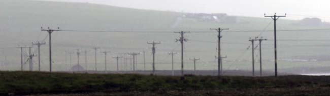 A telegraph pole farm in the Orkney Isles