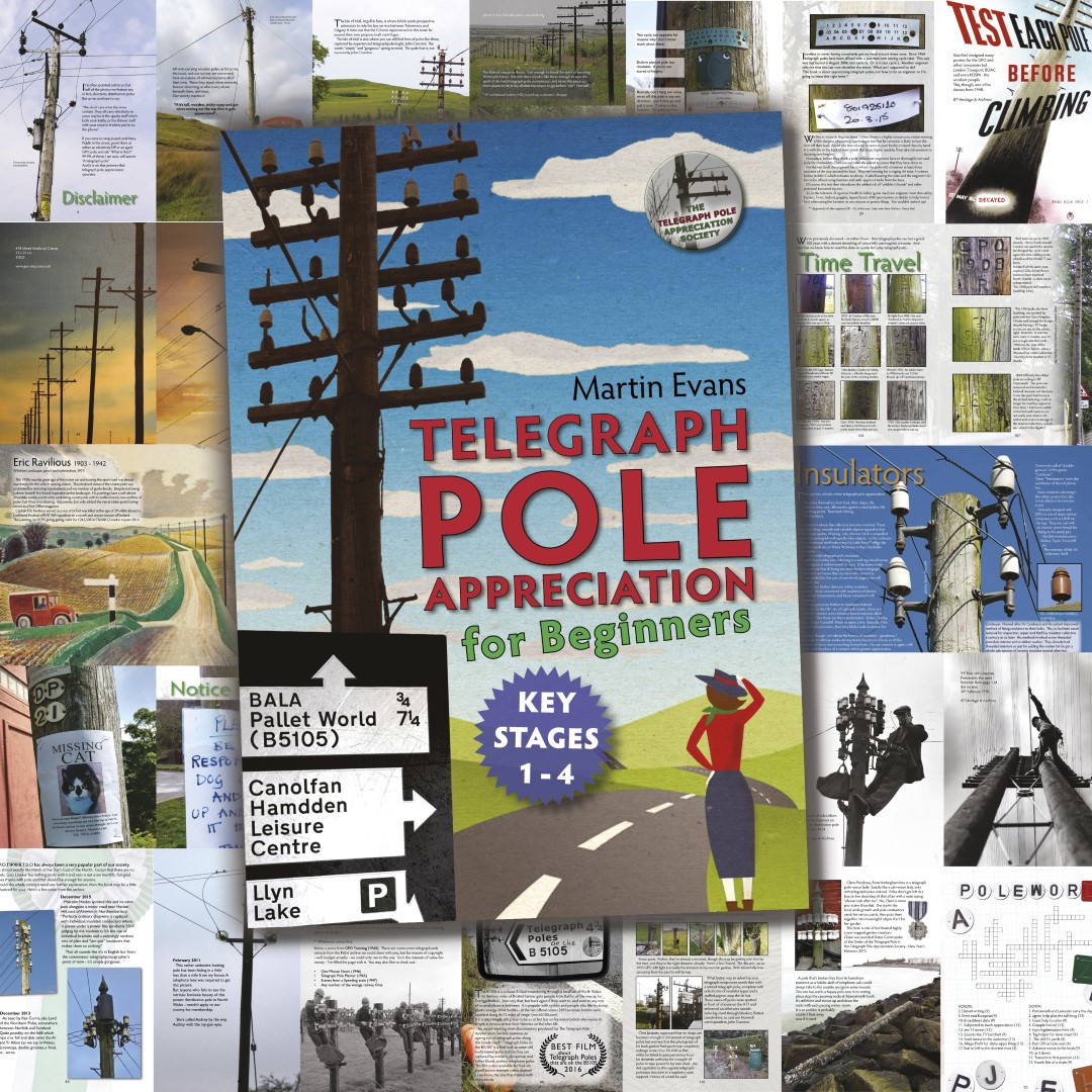 telegraph pole appreciation for beginners (key stages 1-4)