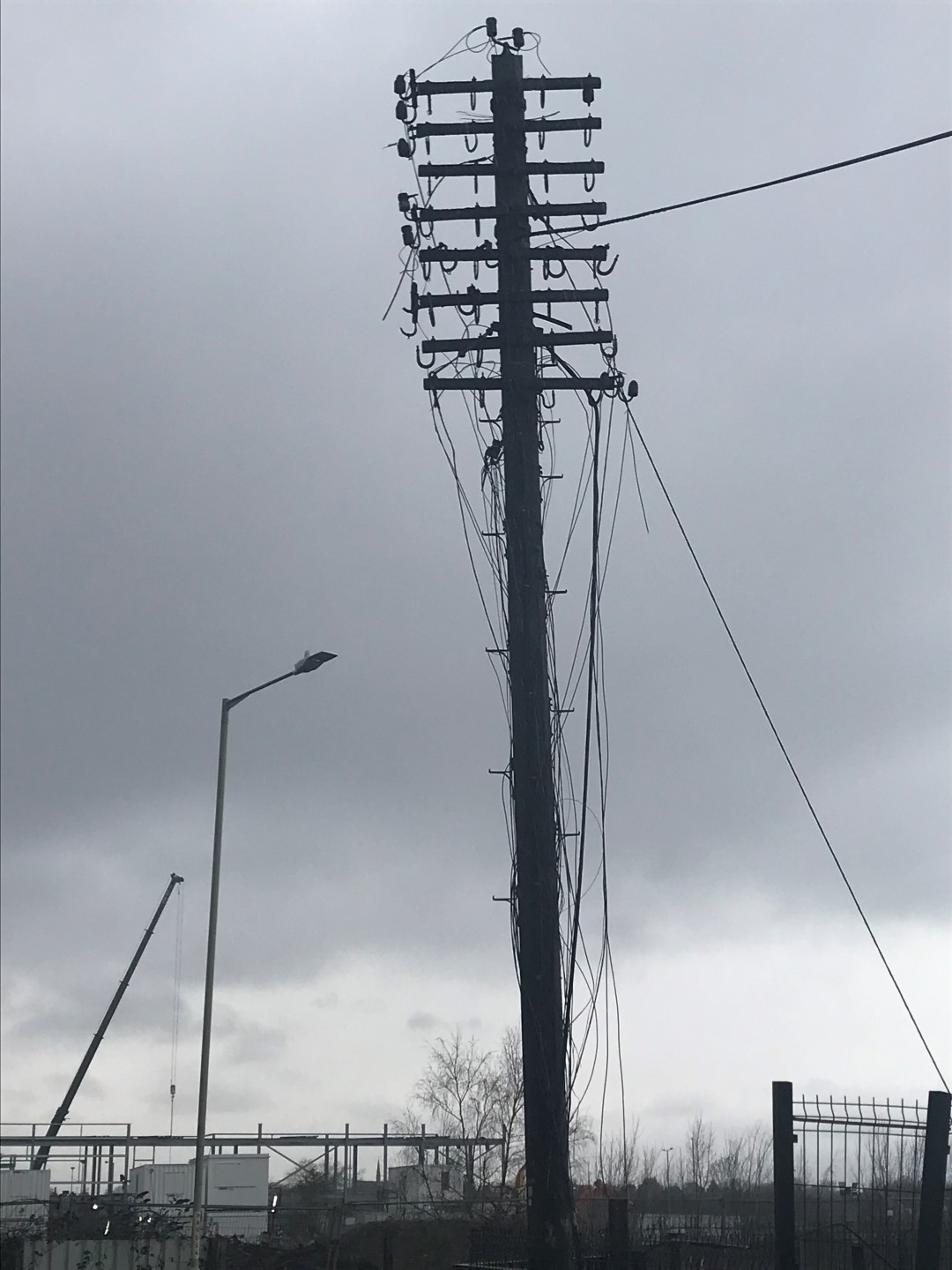 the telegraph pole appreciation society  u2013 what it says