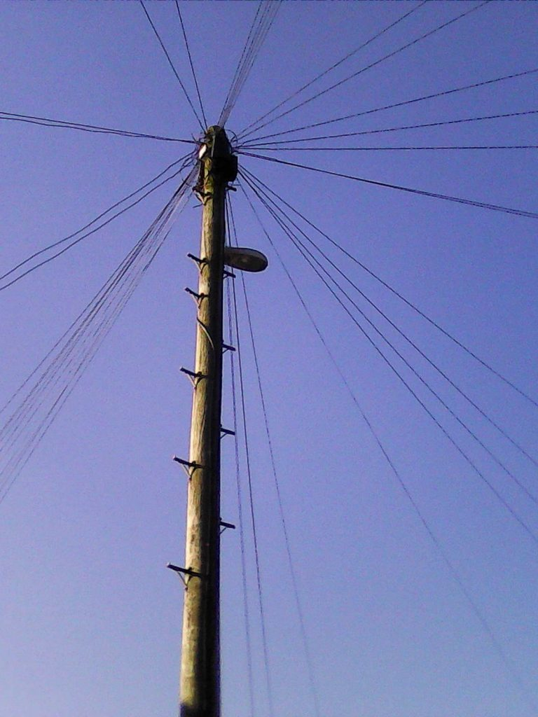 A telegraph pole with 40 dropwires at Norden, Rochdale