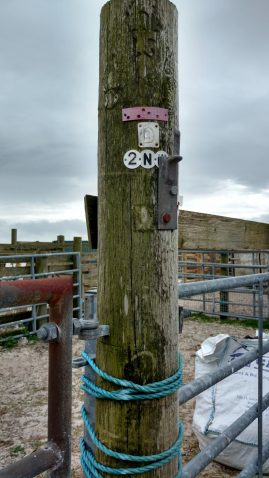 Yet another redundant electric pole, cut off and used as fencing, Stilligarry, S. Uist.