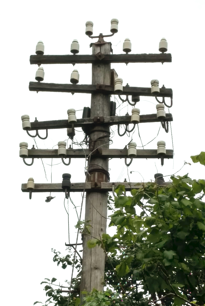The Telegraph Pole Appreciation Society – What it says